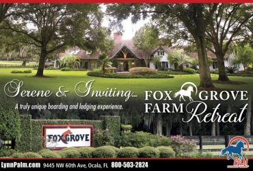 Short Term Lodging and Stabling at Fox Grove Farm