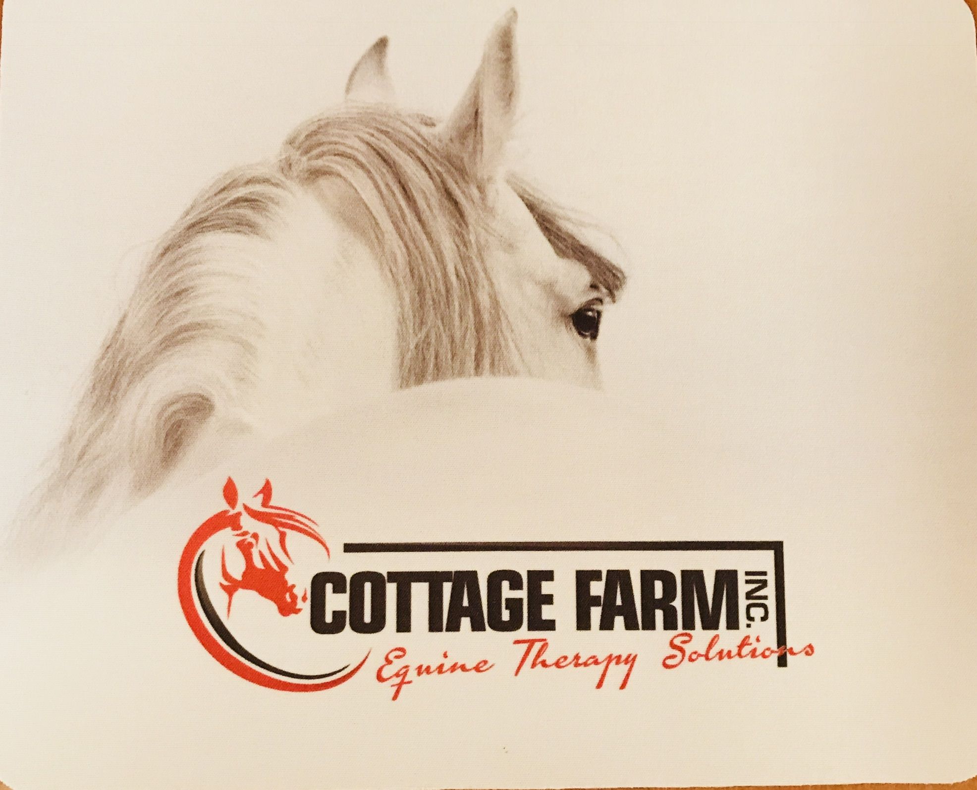 Cottage Farm Inc- Equine Therapy Solutions