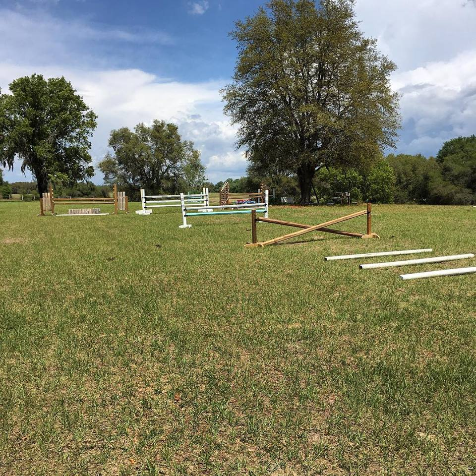 Horse boarding – Pasture, Stall, Retirement, Rehab