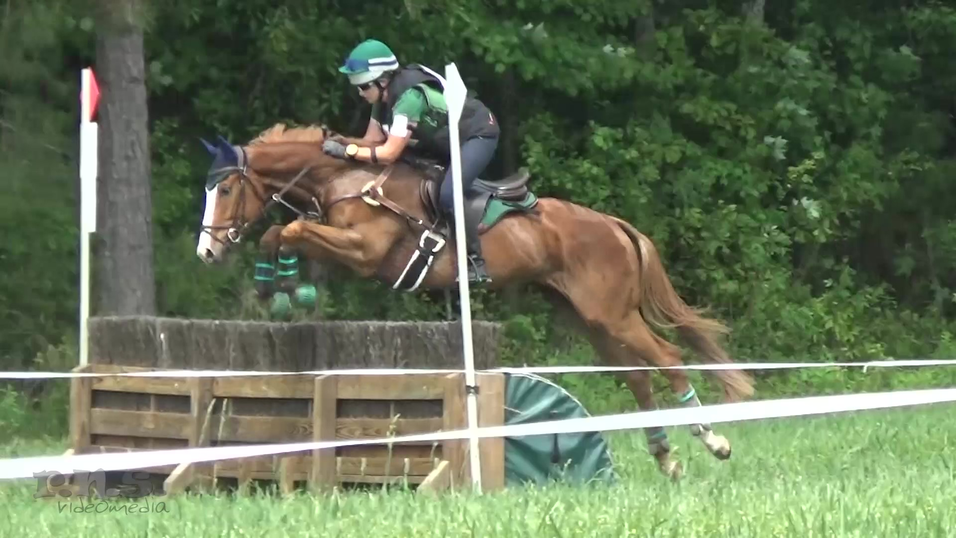 Classical Care and Training Facility – Dressage, Eventing, Jumpers – Close to HITS