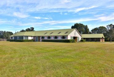 19 Acres  Farm